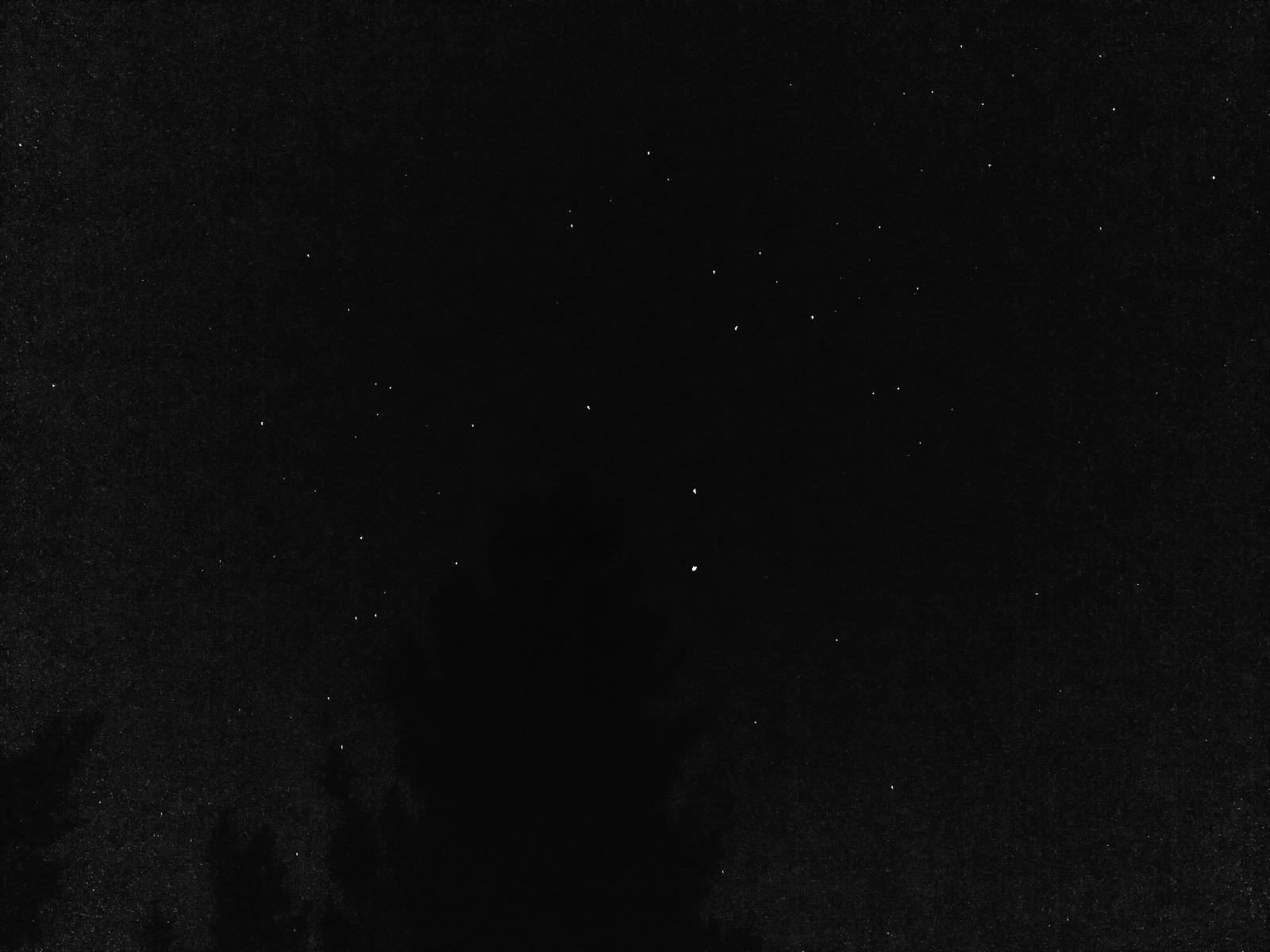 Cielo nocturno improvisado.