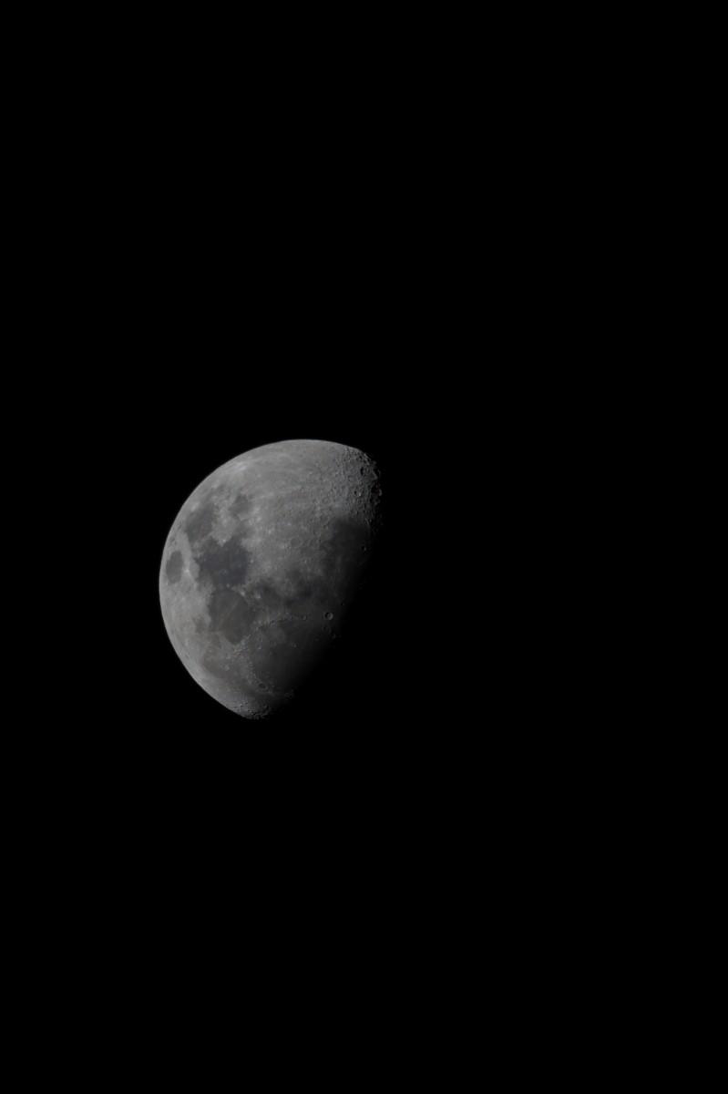 luna DSC03237.JPG