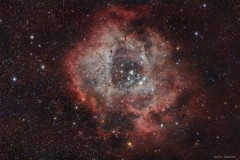 NGC2237 Roseta
