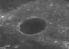 Plato con craterlets