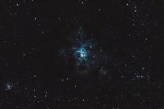 Tarantula (NGC 2070)